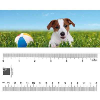 Jack Russell Bookmark