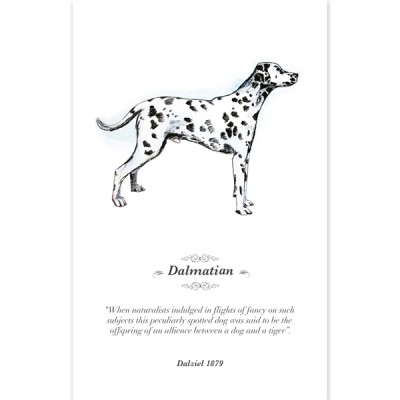 Hounds of History Greeting Cards