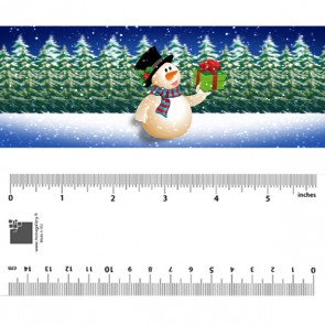 Snowman with Present Bookmark