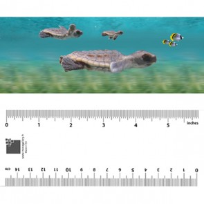 Baby Turtles Bookmarks
