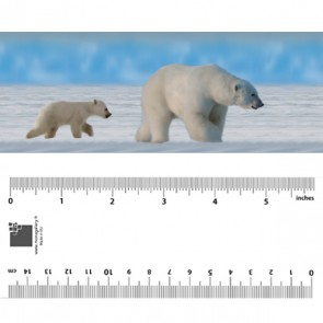 Polar Bear Family Bookmark